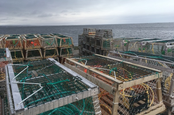 2017-07-10 - Lobster Cages